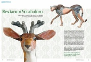 Bestiarum Vocabulum, Ceramic Review